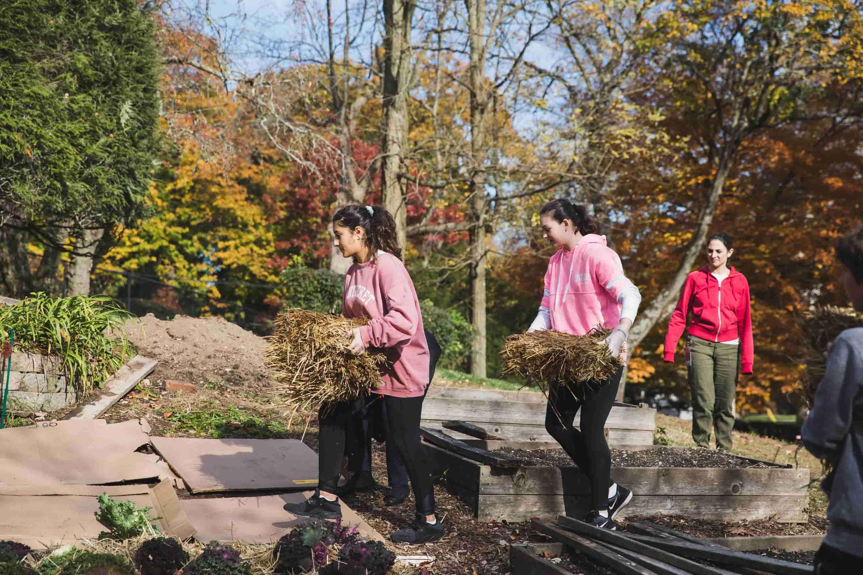 stewardship_students doing yardwork